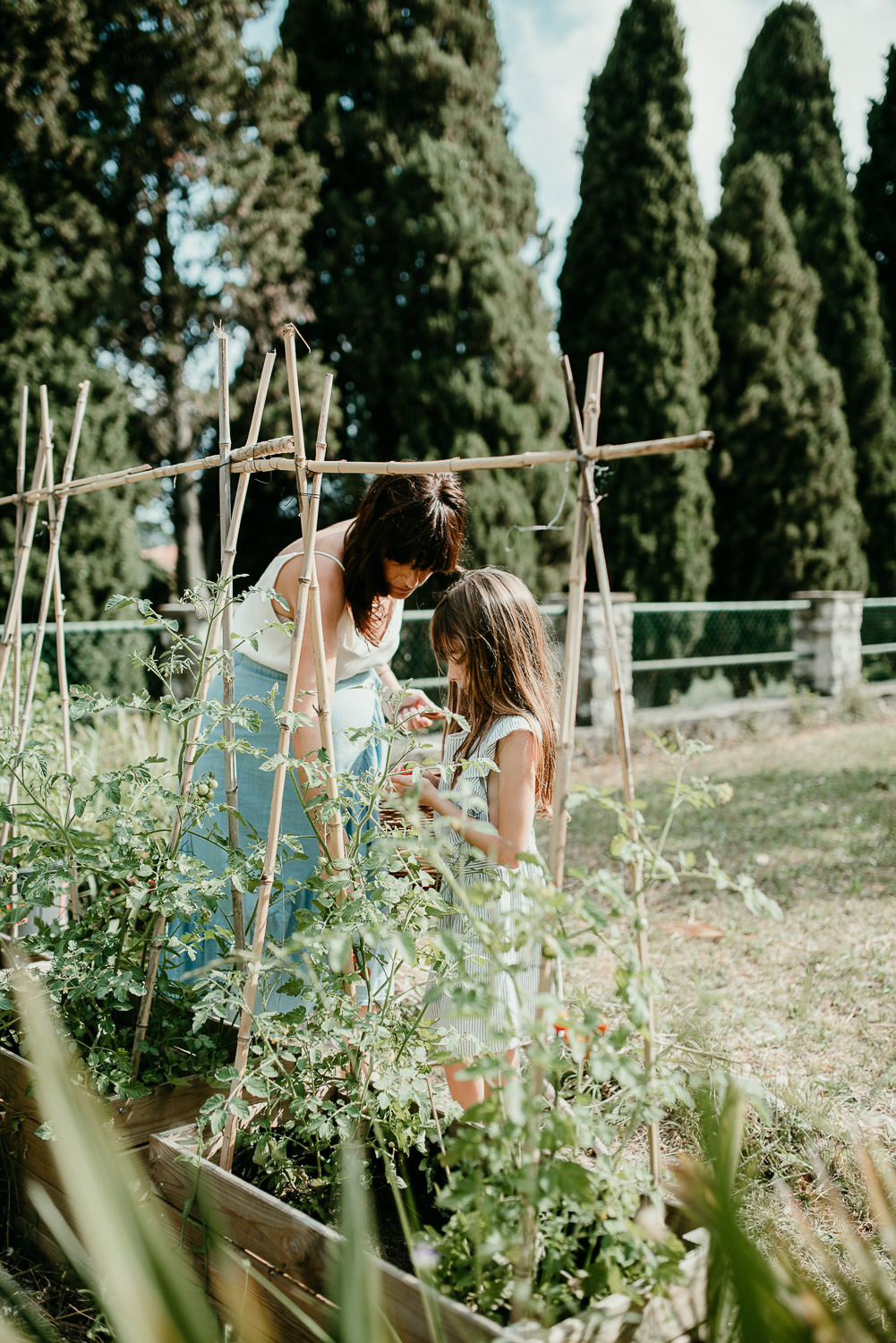 A mother and daughter are in their garden. They are picking cherry tomatoes.